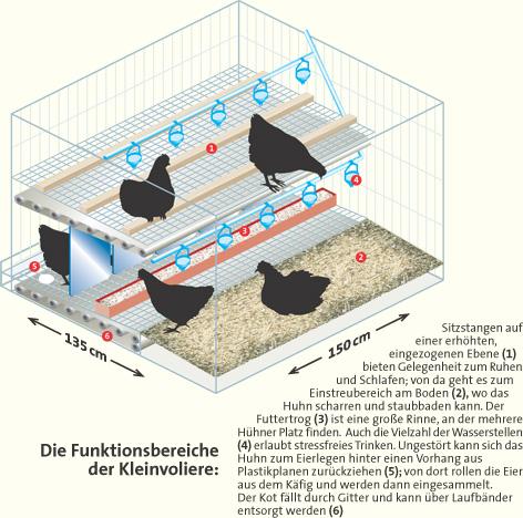 Stempel « Eier von glücklichen Hühnern 09 » Hühner Henne Huhn Wiese Hühnerhof Ei